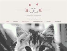 Tablet Preview of cattery-chapawee.nl